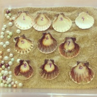 math, counting, sensory learning tray with shells and pearls