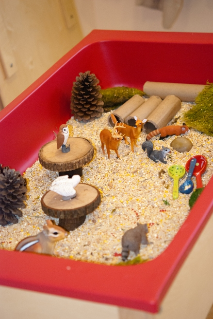 Our Forest Adventures sensory bin.