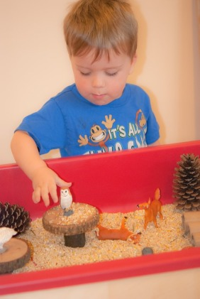 Forest themed sensory tub with birdseed