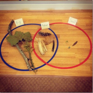 Sorting nature objects by size