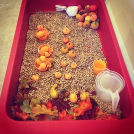 Pumpkin exploration sensory bin, filled with pinto beans, pumpkins, and fall leaves.