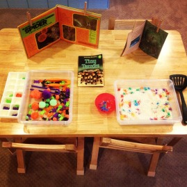 "A typical ""invitation to explore"" set up on the tables. Spider non-fiction books and spider sensory activities."