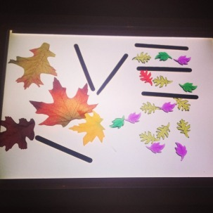 leaves on the light panel