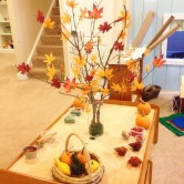 bringing nature inside the classroom, visually stimulating play areas