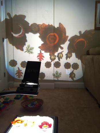 overhead projector with beautiful reflective objects