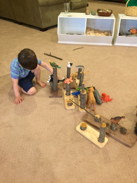 variety of materials for children to explore