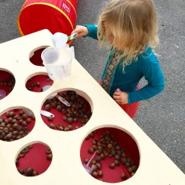 acorns in the sensory tub with a variety of scoops/holes