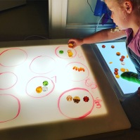 counting pumpkins on the light panel